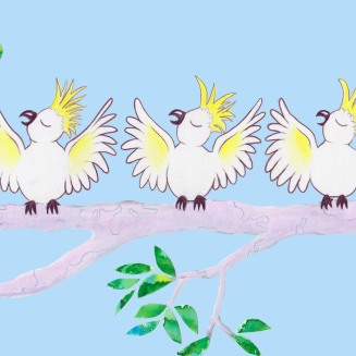 Cockatoo Choir