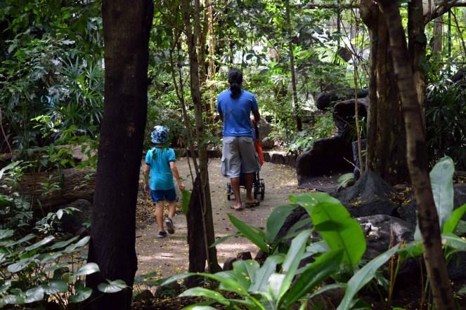 walking-through-dusit-zoo