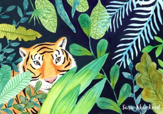 tiger sumatra illo signed